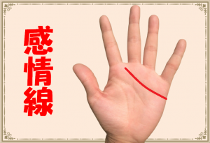 感情線(手相)の基本、枝分かれ・2本・長い・短い意味とは?