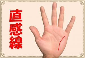 直感線の意味とは?第六感に優れた貴重な手相